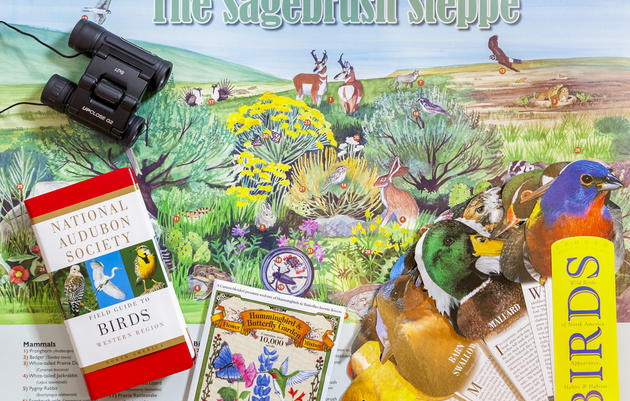 Sagebrush Steppe Poster Lesson Plan
