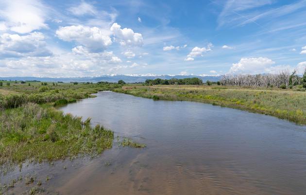Restoring St Vrain Creek