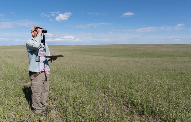 Monitoring on Conservation Ranches