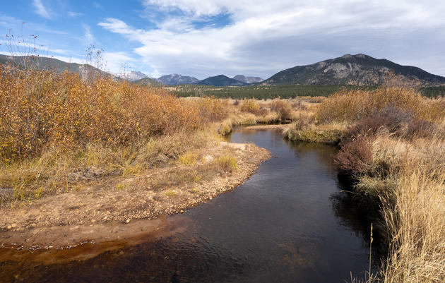 Legislative Water Priorities in 2020 for Colorado's Rivers, Birds, and People