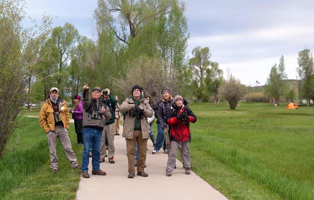 Birding Festivals of the Rockies
