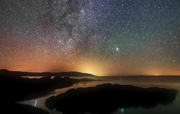 A New Golden Age of Observation Is Revealing the Wonders of Night Migration