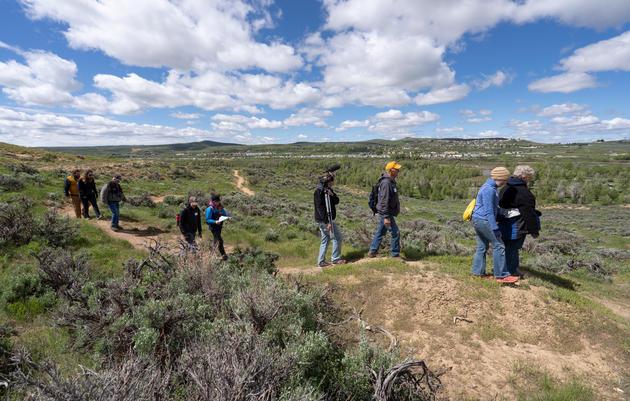 Wyoming BioBlitz 2019 Wrap Up