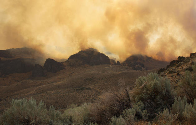 Why is Sagebrush Country on Fire?