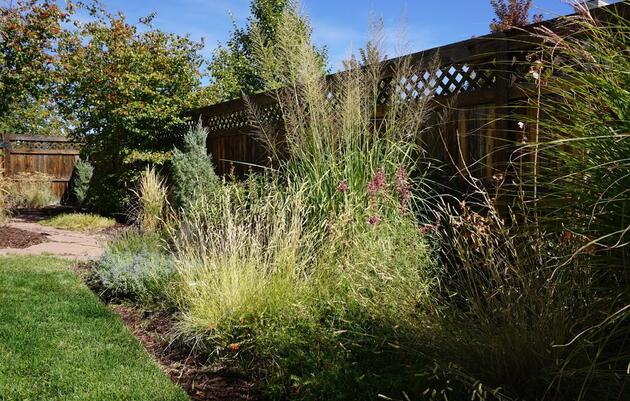 Saving time, trouble and water with a pre-planned garden