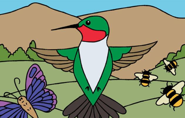Pollinator Pals