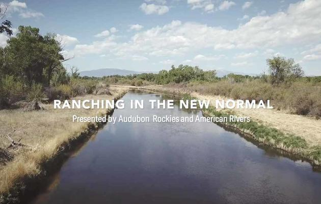 Ranching in the New Normal