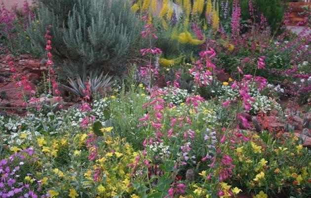 Design Considerations for a Successful Habitat Hero Garden
