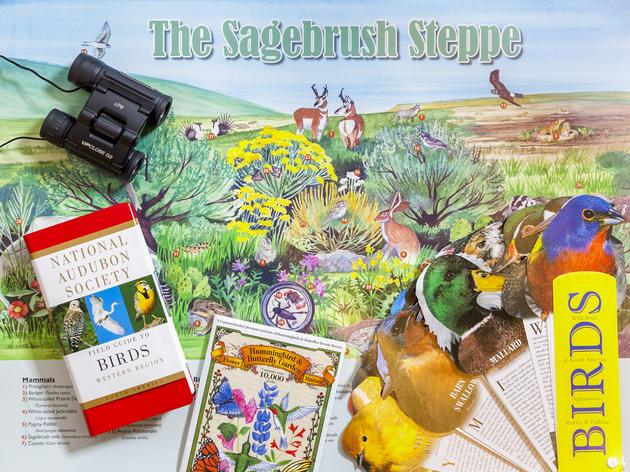 Sagebrush Steppe Poster Lesson Plan
