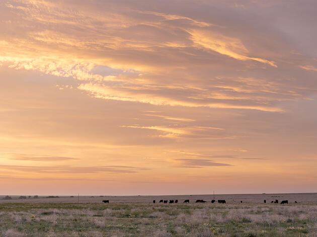 May Ranch Receives Colorado Leopold Conservation Award