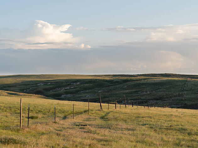 Reconciling Ranching and Conservation