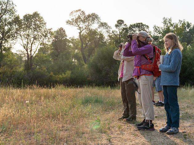 BioBlitz Brings Wyomingites Together To Explore