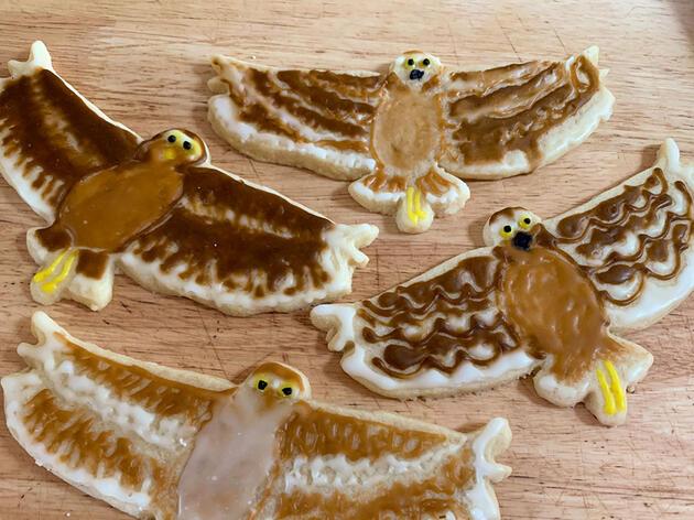 How to Make Bird Cookies