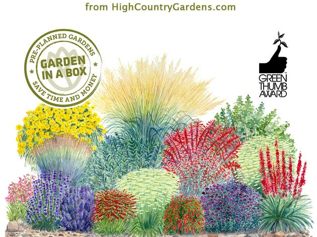 A Wonderful Video by High Country Gardens that Captures Our Partnership and the Habitat Hero Birdwatcher Garden