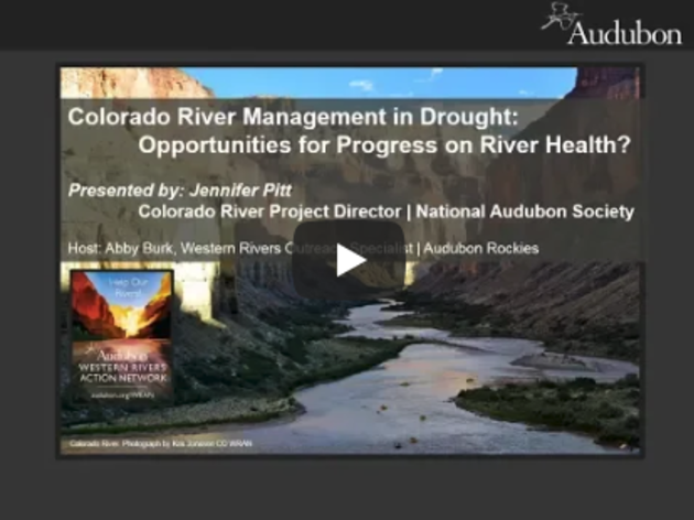 Colorado River Management in Drought