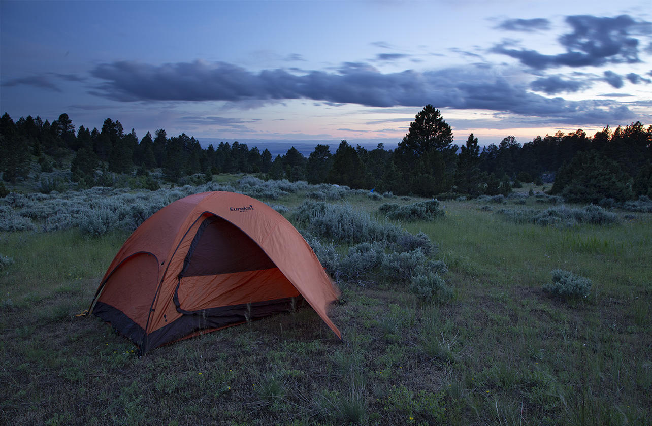 Camping at Wyoming BioBlitz 2018