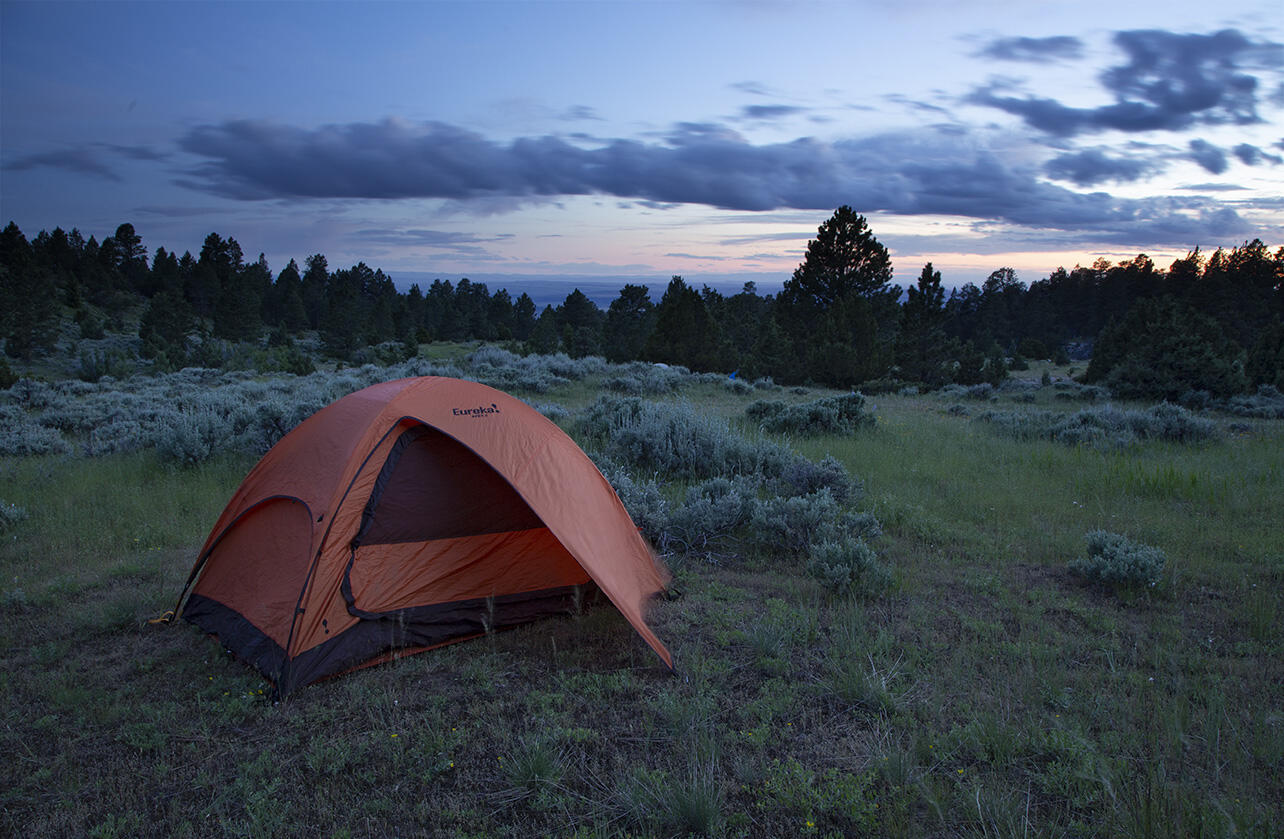 An orange tent in a montane meadow at dusk.