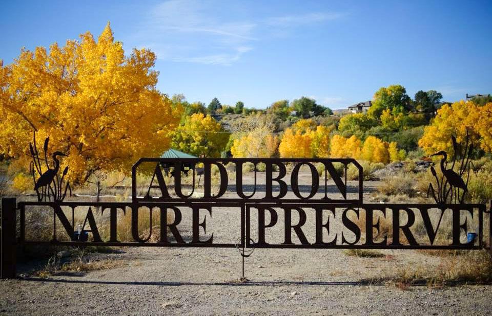 Audubon Nature Preserve Grand Valley Audubon