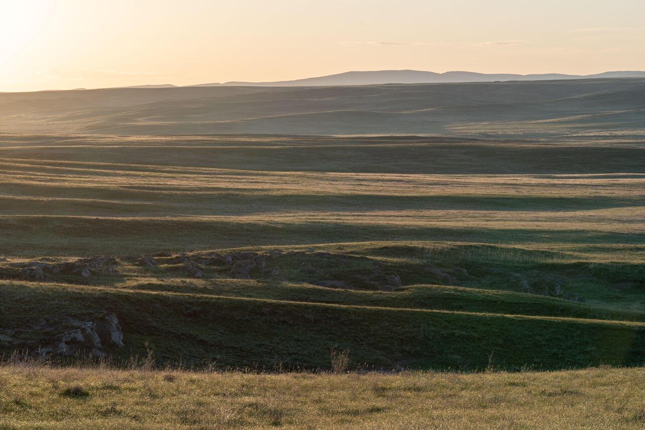 Shortgrass prairie landscape.