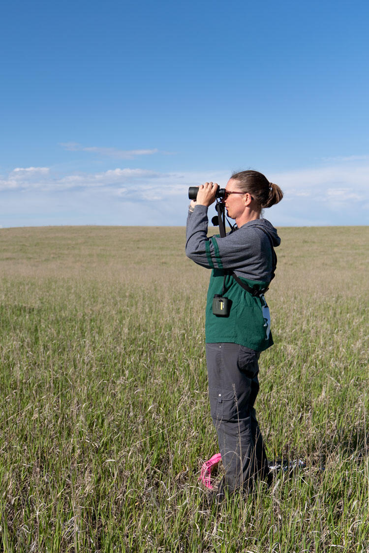 A biologist conducts a bird survey on an Audubon-certified ranch.