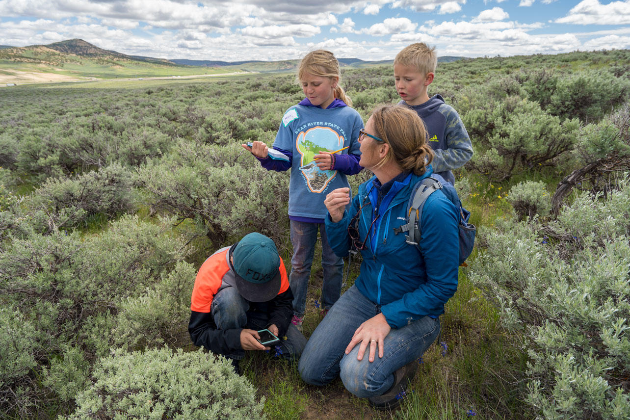 A family identifies plants at Wyoming BioBlitz 2019.