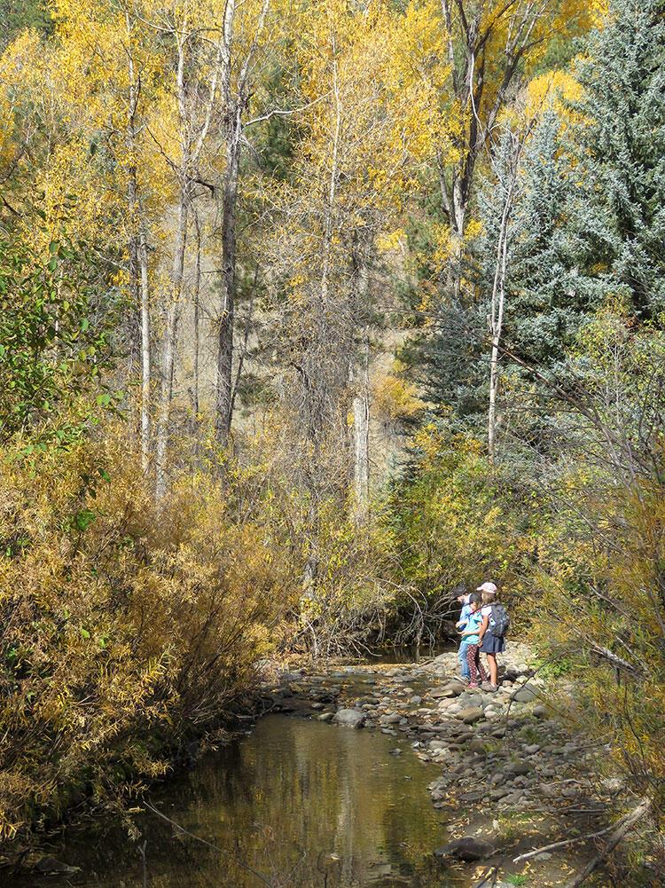 Kids explore Four Mile Ranch.