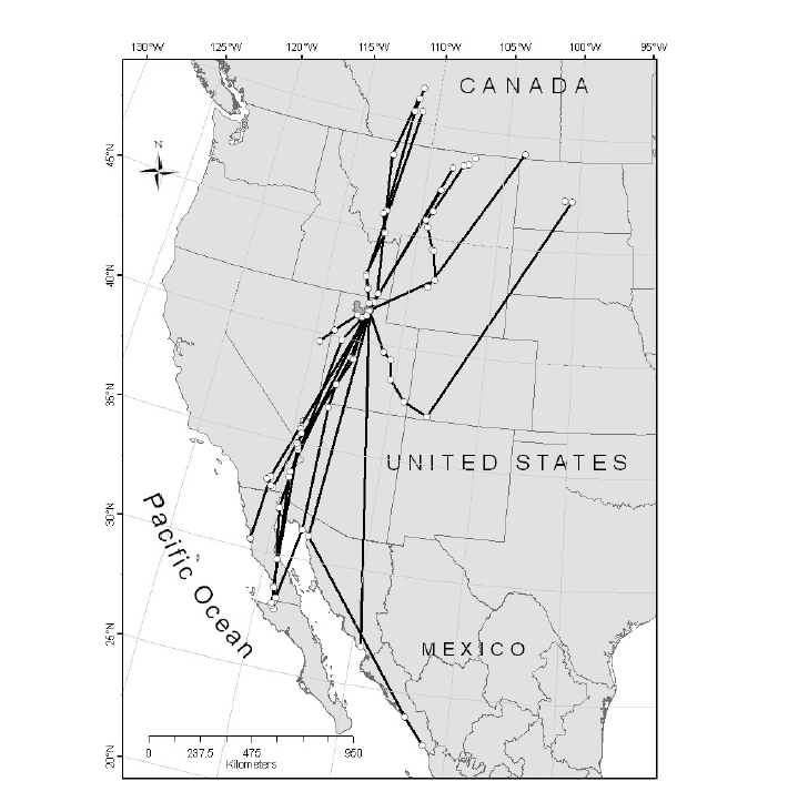 Southbound migration routes and location points of Marbled Godwits PTT-tagged at Bear River Migratory Bird Refuge, Utah, 2006-2010.