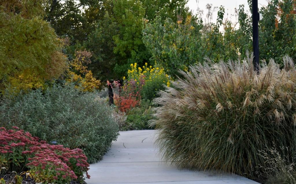 Captivating Design Path In Fall 2_Conservation Garden Park 1024x635