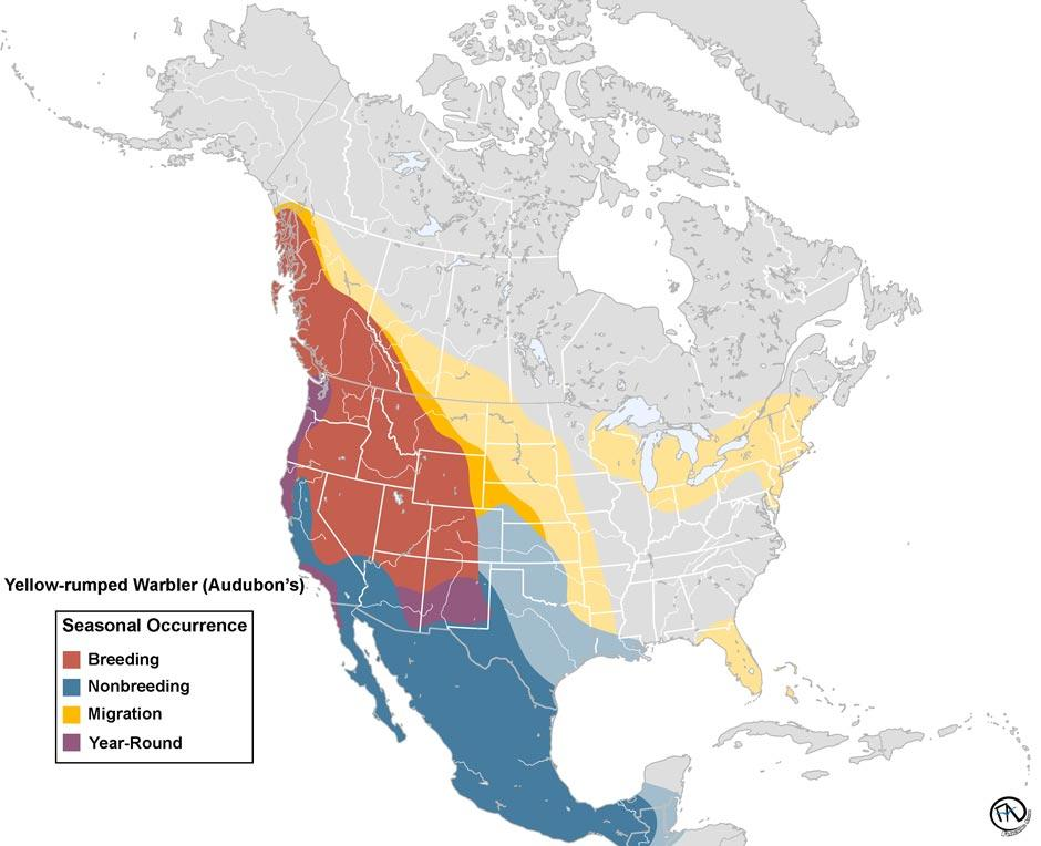 Yellow-rumped Warbler (Audubon) Range Map