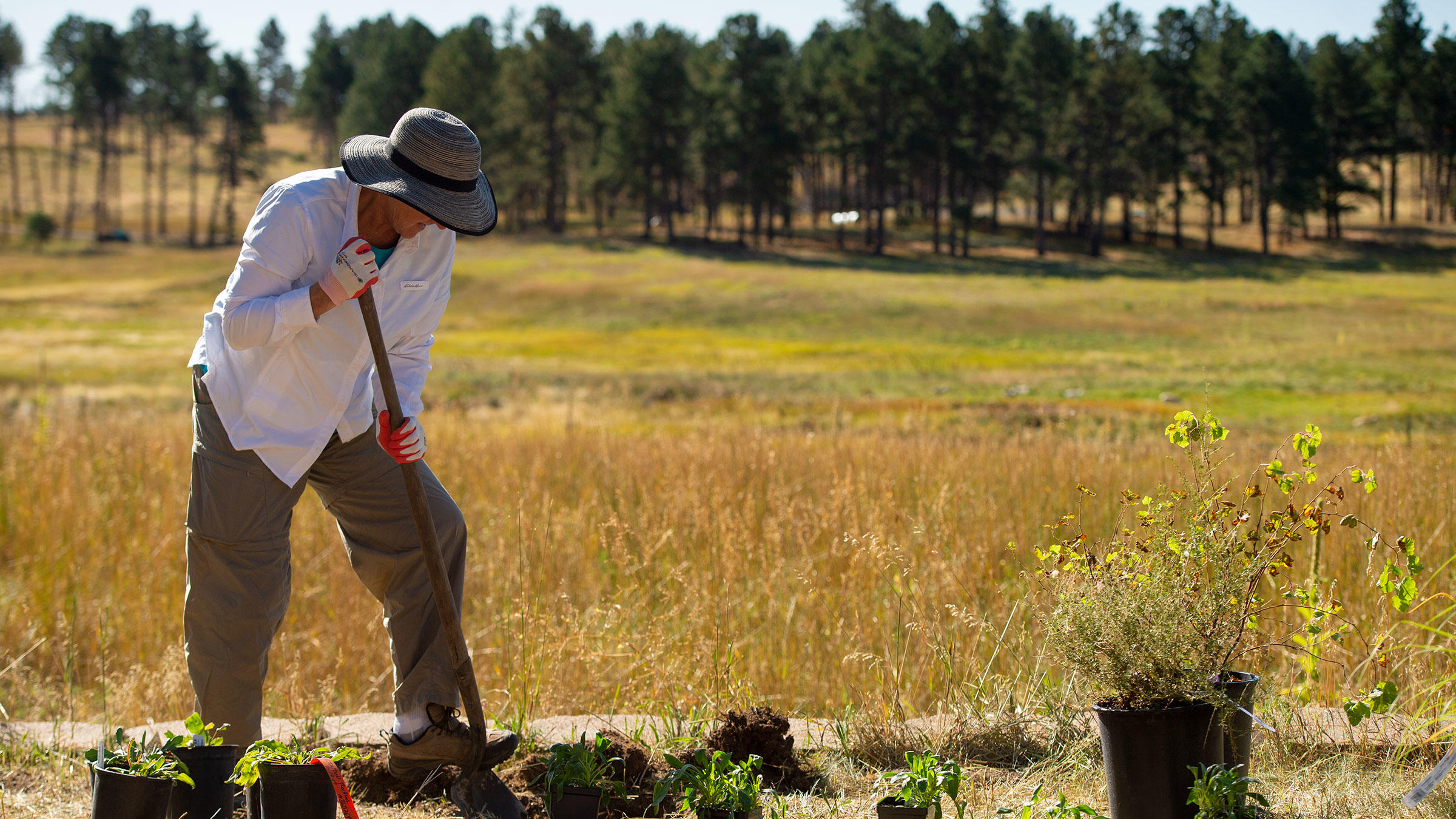 A volunteer digs holes for the Habitat Hero garden at Kiowa Creek Ranch.