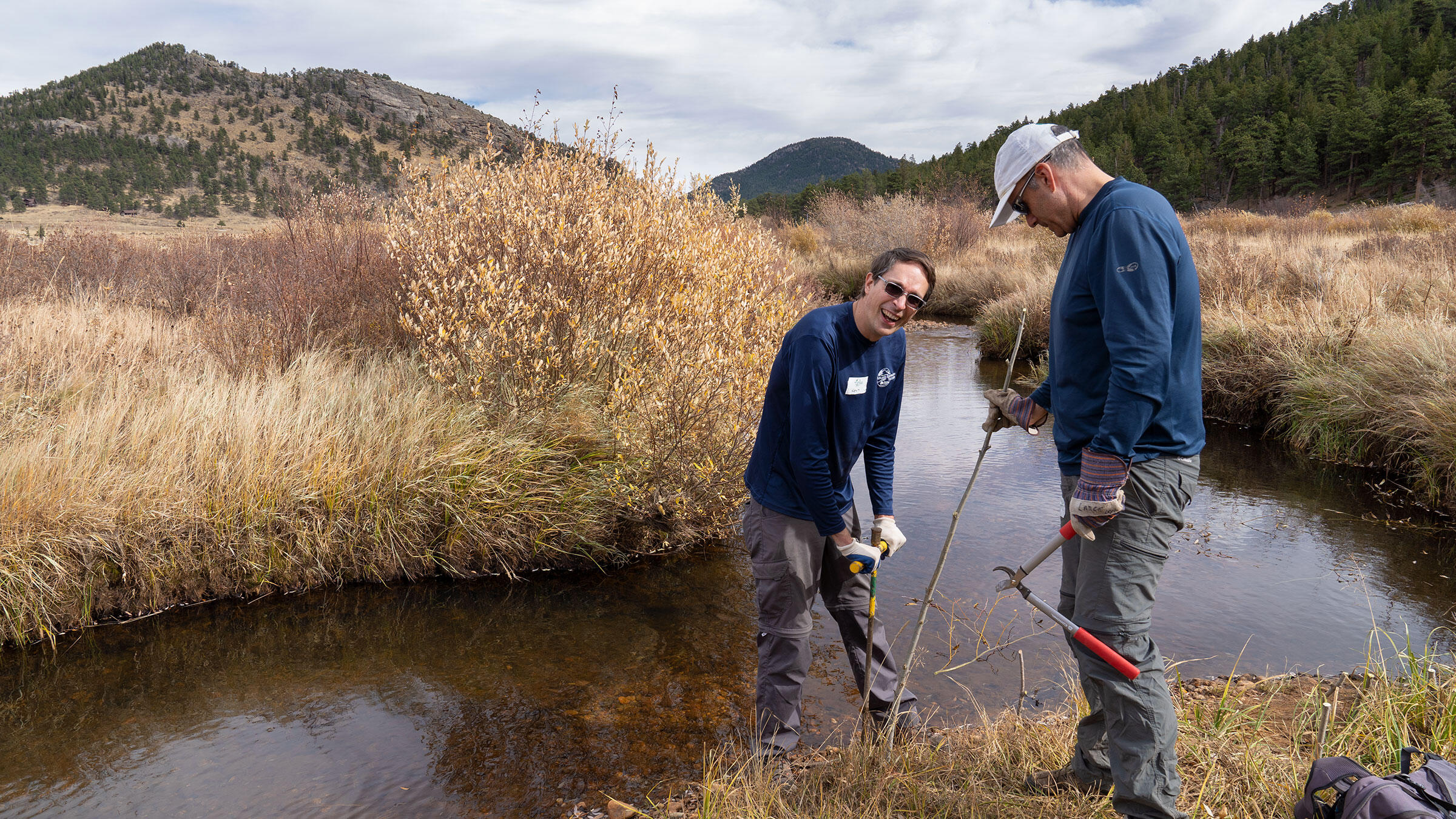 Volunteers plant willow saplings next to a montane stream.