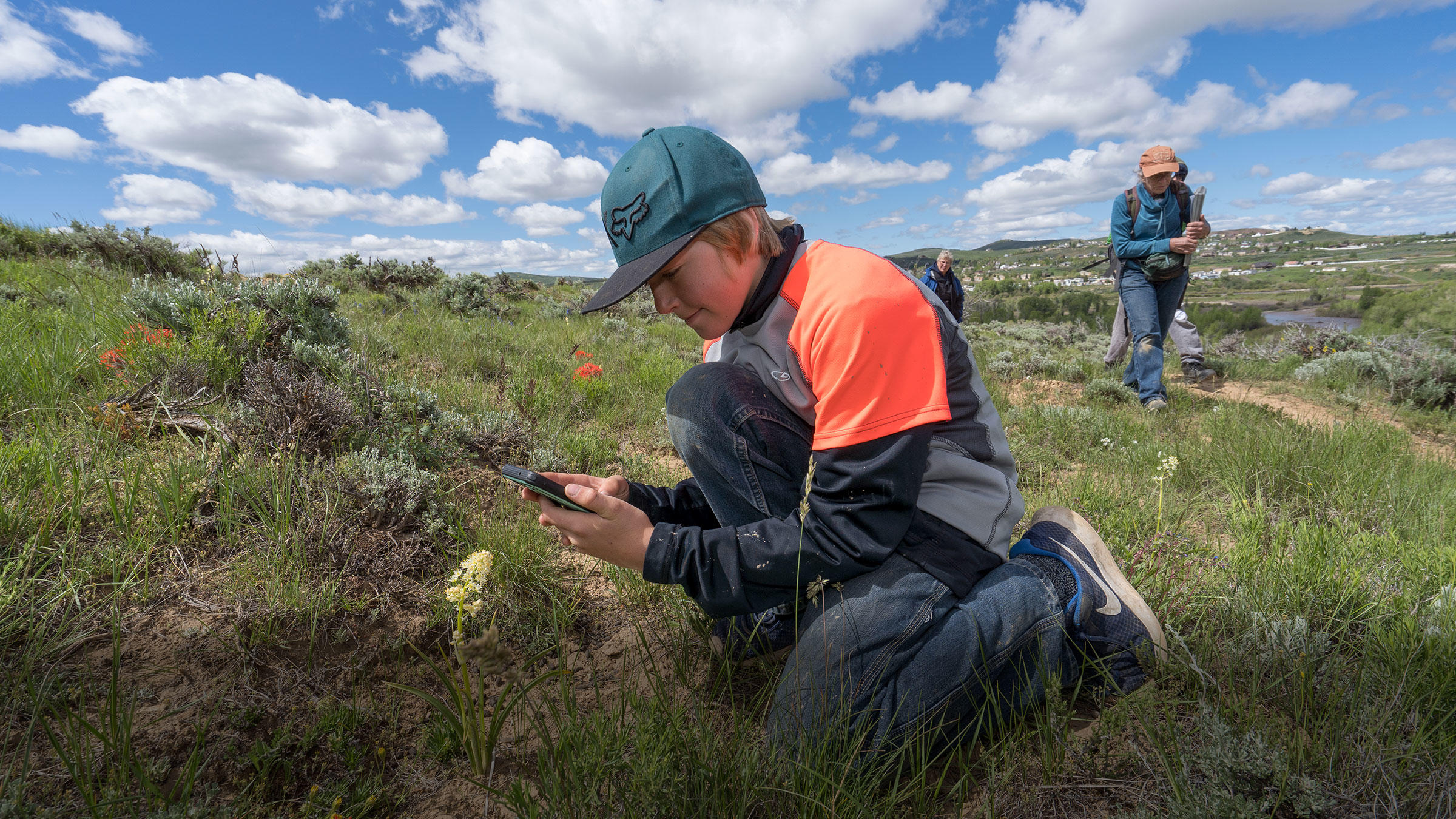 A boy identifies a plant at Wyoming BioBlitz 2019.