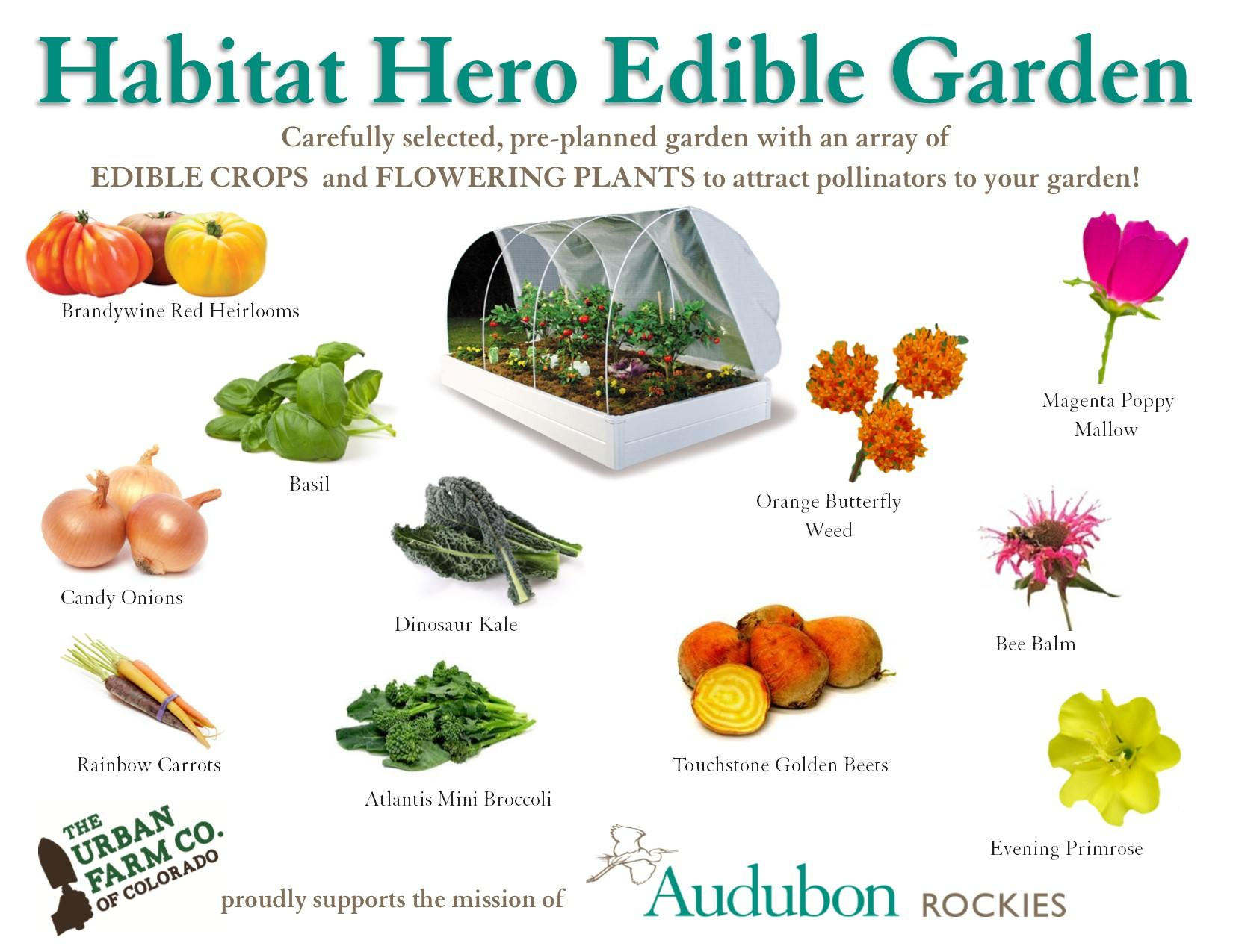 Habitat Hero Edible Garden Audubon Rockies