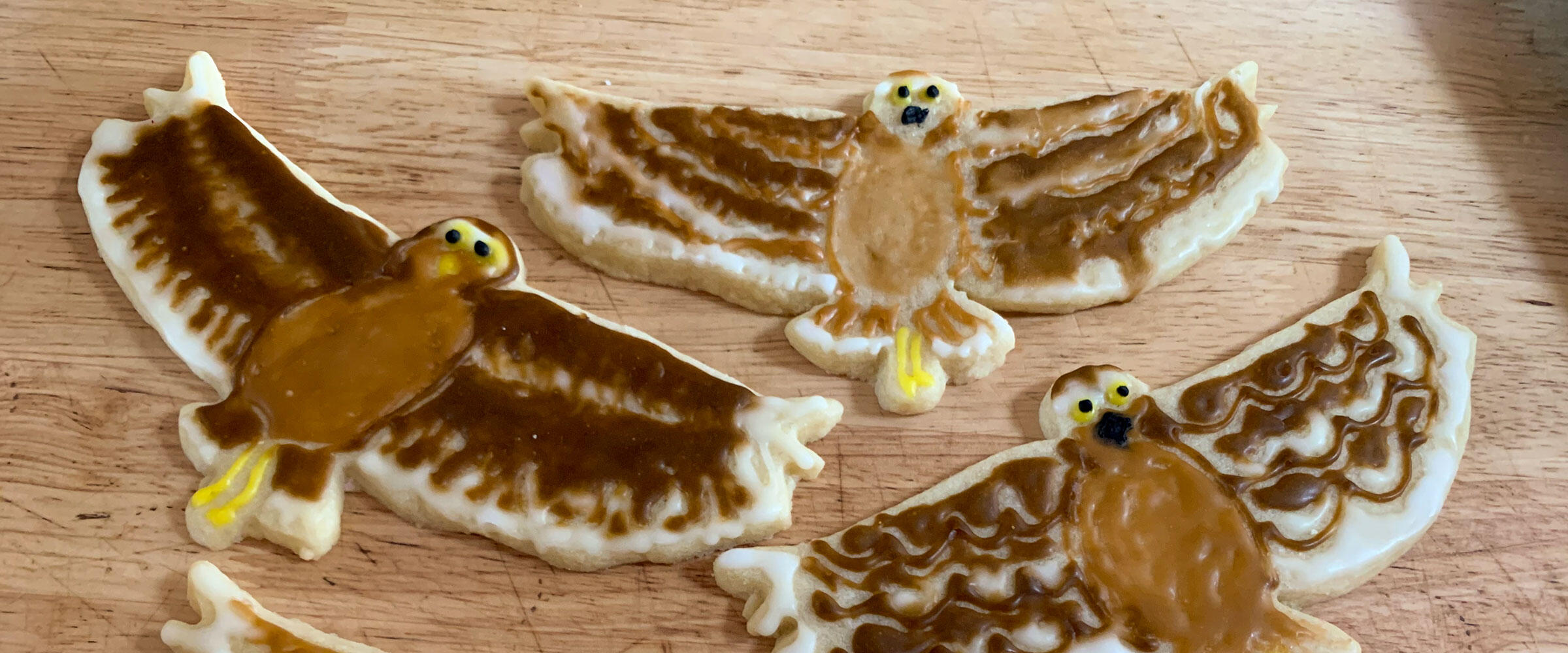 Cookes shaped and decorated like Burrowing Owls in flight.