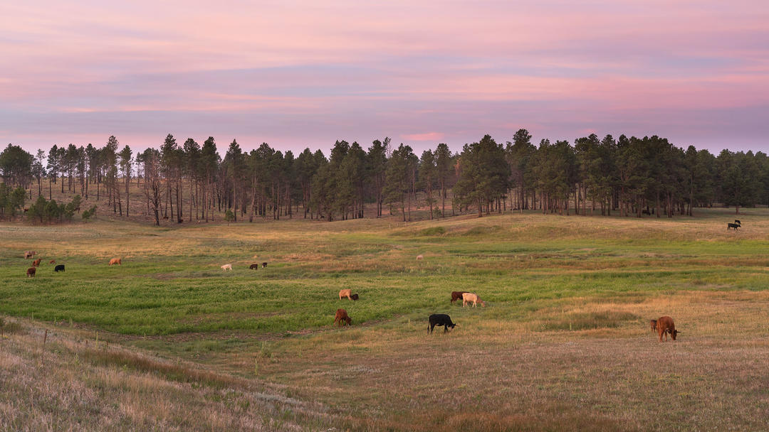 Kiowa Creek Ranch.