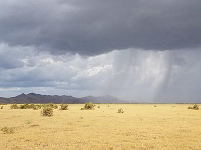 A storm passes over Gillmor Sanctuary.