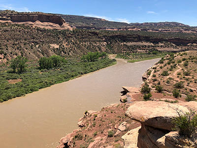Colorado River at the Colorado/Utah state line, flowing at 37,700 cubic feet per second.