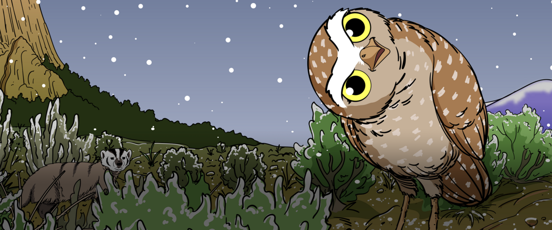 An illustration of a Burrowing Owl in the sagebrush steppe with snow falling and a badger in the background.