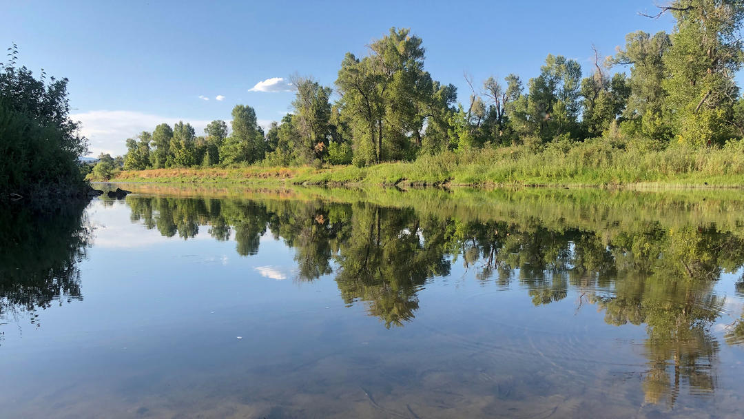 Yampa River.