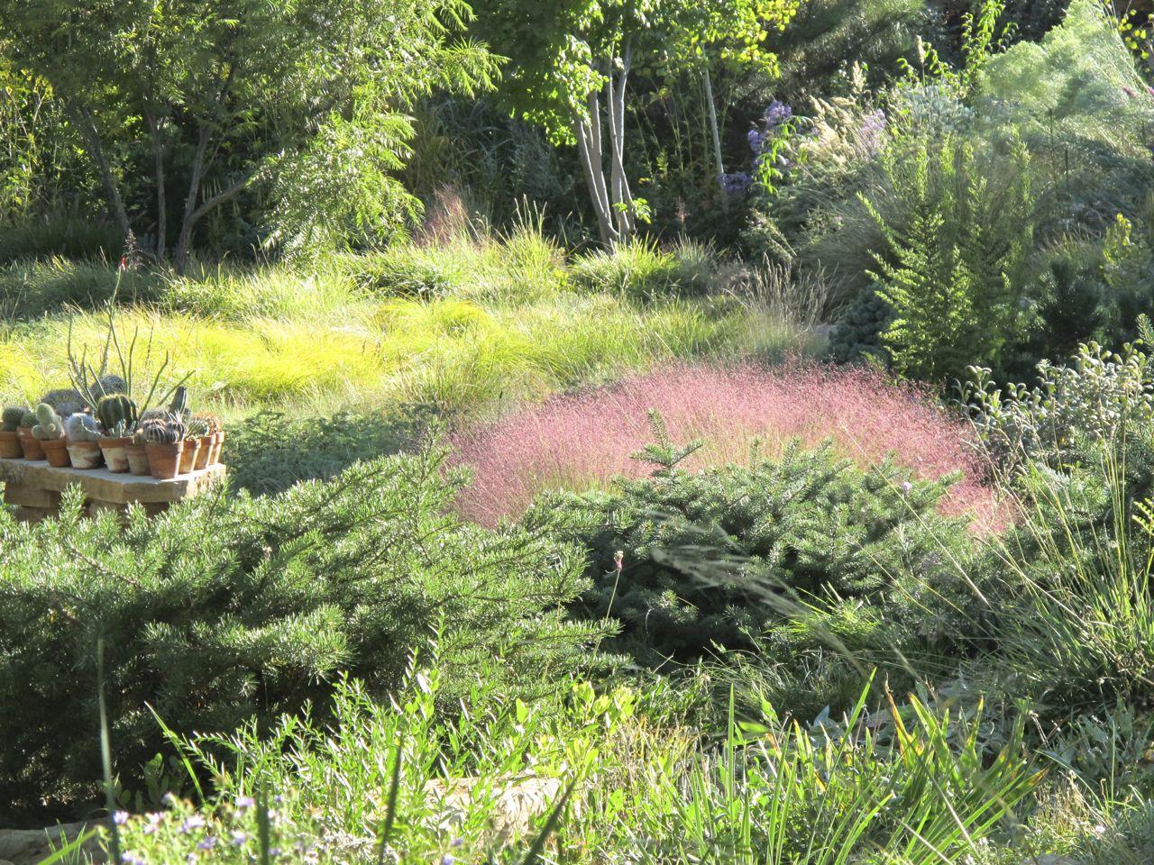 Waterwise Landscaping Audubon Rockies
